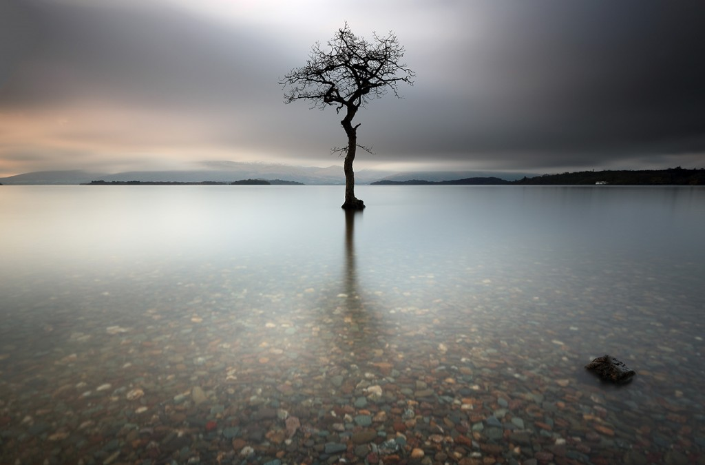 "A lone tree partially submerged in the water of Loch Lomond, Scotland.<br /> <a href=""http://pixelsgallery.com/featured/lone-tree-loch-lomond-grant-glendinning.html"">Buy Print or Canvas<img src=""http://www.photoscotland.net/captionpic/Pixels.gif"" alt="""" /></a>"