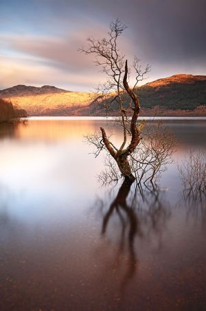Tarbet - Loch Lomond